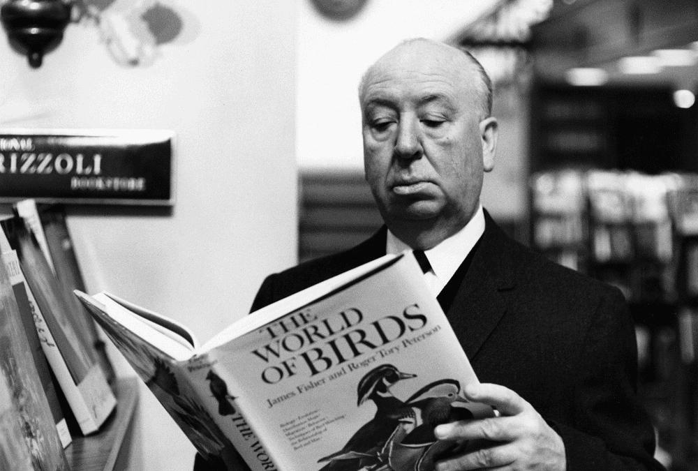 Cinema e letteratura: un rapporto possibile?
