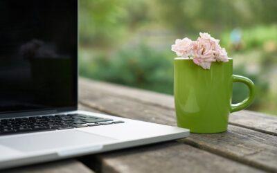 Contenuti Evergreen: come scriverli e perché sono importanti per il tuo blog
